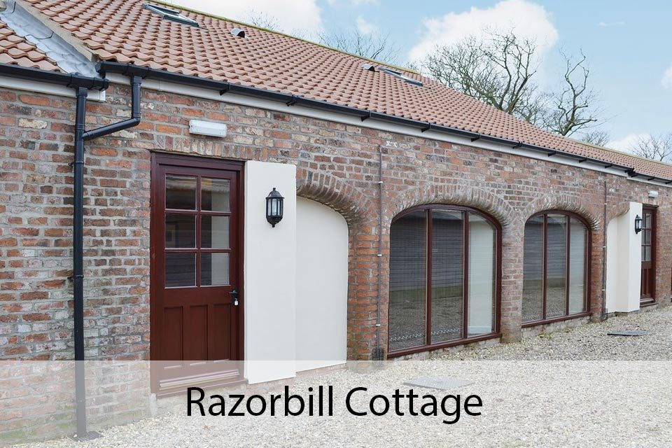 Razorbill Cottage